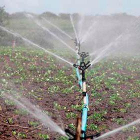 irrigation à la ferme du doux riez de l'Authie